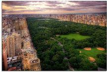 New York New York / by Emily Teachout