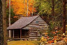 Autumn / by Emily Teachout