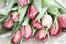 Flower love / by Melanie @ Dejlige Days