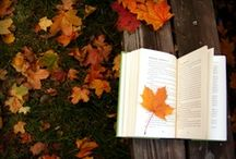 Autumn Is My Favorite / by Ally Lopez