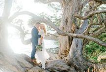 Photography Stuff: Wedding / by Vanessa Qualtieri Fotografia