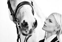 Equestrian Obsession