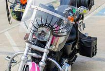 Harley Davidson / by Susan Walters