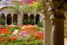 "GARDEN BEAUTY / ""My garden is my most beautiful masterpiece""  ― Claude Monet / by Diane"