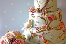 Cake's & Cupcake