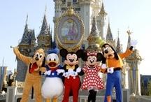 Anniversary Trip to Disney World!  / by Rachel Metcalf
