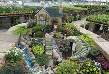 Successful Garden (Fox 8) / by Linda Dozier