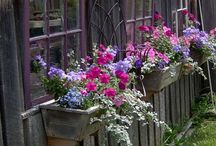 Gardening Style/ideas / by Peggy Rice