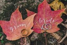 Fall Wedding Theme / Inspiration for a Fall Theme Wedding