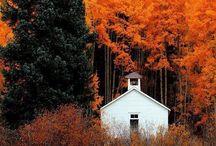 Craves Fall Mornings...
