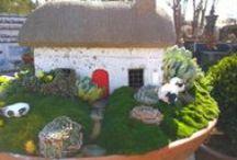 Fairy Garden, Garden Gnomes / Fairy gardens and garden gnomes