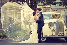 All Things Wedding! / by Caroline Cohen