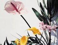 Floralists