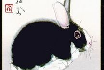 a n i m a l i a ♥ bootiful bunnies