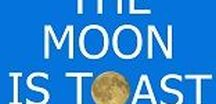The Moon is Toast / A year in the life of a cricket statistician - Andrew Samson (BBC Test Match Special and SA Cricket Board) provides a diary of cricket (and some baseball) statistics as they played out in 2015. Available from tslbooks.uk