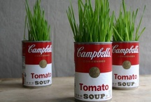 Campbells Soup / by Ziggygirl61