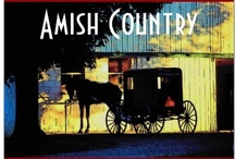 Amish Country / The Amish were near our hometown.  They were very close to my Sis's home.  They could not have a telephone but could have a telephone booth on the county road.  There are many different communities of the Amish and they have different rules. / by Tully Wise