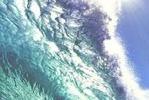 Wave life / Sea, Beach - the real life