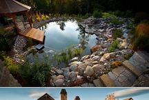 Swimponds/ Natural Swimming Pools / by Celeste Hunter