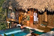 CR Huts and rooms to remodel / Design and decor elements for the hotel room interiors. Rustic looking Resort with Luxury linens and spacious baths. Jungle views. Authentic Costa Rican Coffee plantation & family farm.  / by Kim Bengard