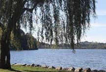 Lac / Lake Lourdes / Le Lac de Lourdes est un lac glaciaire d'une superficie de 52ha, la partie ouest du lac étant aujourd'hui devenu un marécage.  Les activités y sont variés, VTT, marche, golf, pêche, pédalo ou encore canoë-kayak.