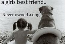 My Dogs are My Kids / by Carlota