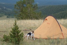 Camping & Survival Prep / by Michelle Paschall
