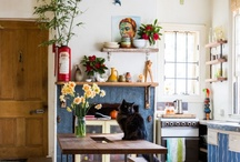 Dream Home~ Kitchens / by Merle Pace
