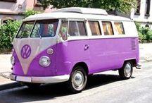 Purple Wonderland!