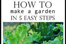 Gardening / by Erica Howell