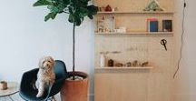 Storage & Organization / Ideas and products to help you organize your home.