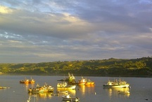 Dalcahue / by Cat