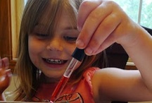 SCIENCE for the Kiddos / A collection of science activities for kids of all ages.