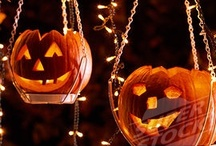 Halloween / by Tara Bardella