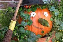 Ideas - Halloween / by Jolene Mohr