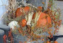 Ideas - Fall / by Jolene Mohr