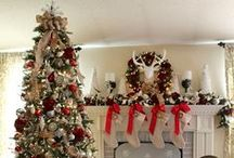 Oh, Christmas Tree! / Ideas and inspirations for Christmas trees for this holiday season!