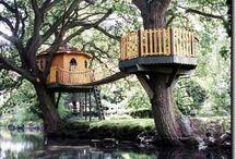 Tree Houses / by Renee Kerby