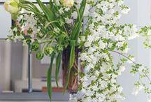 Garden Design + Flowers