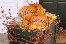 Fall or Thanksgiving / by Renee Kerby