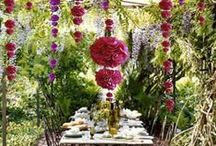Event Creations / Decorations