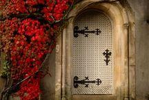 Doorways / by Renee Kerby
