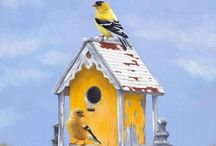 Bird Houses / by Renee Kerby