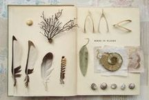 Sketchbooks / Journals / by Angie