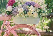 Flowers / by Renee Kerby