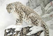 animals / by Cindy Wells