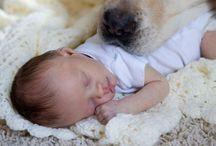 Baby.Baby.Baby. / by Alexis Hammett