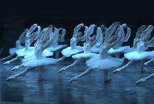 Mariinsky Ballet / My favourite  ballet company, which represents unique Vaganova's style. Some photos of Lopatkina, Tereshkina, Stepanova, Kondaurova, Kolegova...