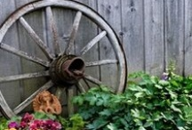 Garden Decore / All the wonderful elements to decorate the garden, from chairs, to watering cans, to ladders, wagons, bikes, pots, birdcages, birdbaths, statues, and so much more. Wonderful ideas to make little vignettes throughout the garden. / by Julie