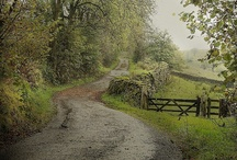 Down A Country Lane / There's nothing like a stroll down an English country lane on a lovely sunshiny day. / by Julie